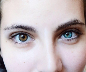 blue, crystal, and eyebrows image