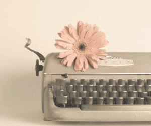 flowers, vintage, and retro image