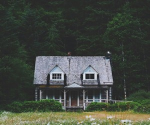 house, nature, and forest image