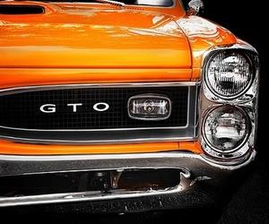 orange, GTO, and car image