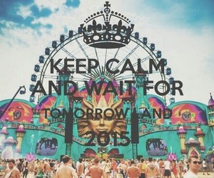Tomorrowland, party, and 2015 image