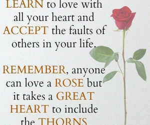 love, life, and heart image
