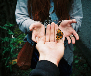 brunette, butterfly, and fly image