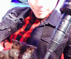 kitten, 5sos, and love image