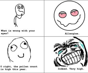 high, weed, and allergies image