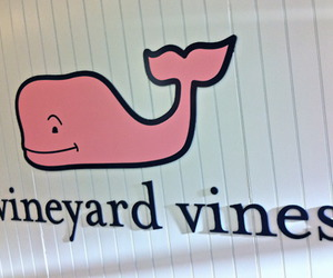 vineyard vines, fashion, and preppy image