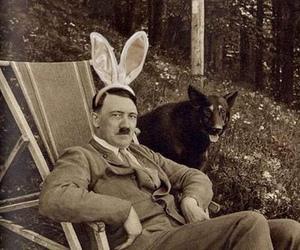 hitler, dog, and bunny image