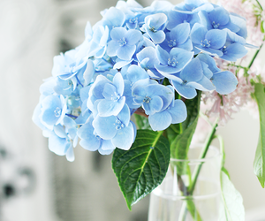 blue, flowers, and breakfast image