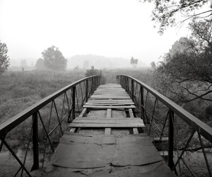 bridge and black and white image