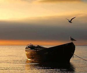 sunset, boat, and nature image