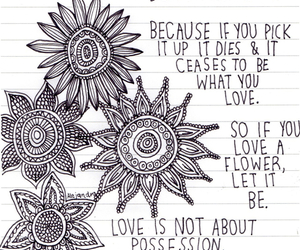 flowers, quote, and love image