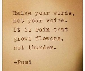 quotes, words, and Rumi image
