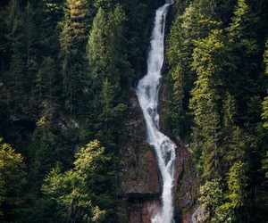 waterfall, nature, and forest image