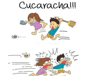 cucaracha and funny image