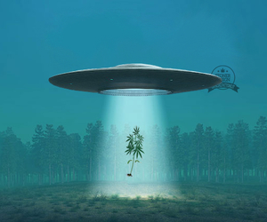 aliens, dope, and marihuana image