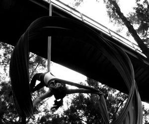 tela, tissue, and danza aérea image