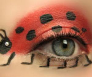 eye, ladybug, and red image