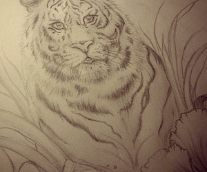 animals, art, and drawing image