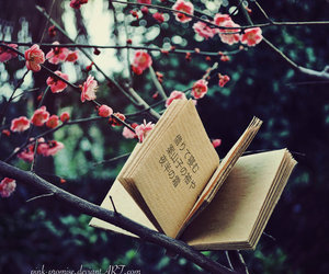 book, beautiful, and flowers image