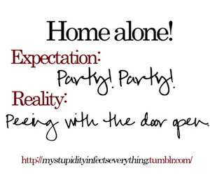 party, home alone, and funny image