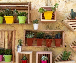 cool, decoration, and gardening image