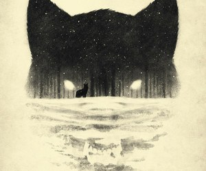 animal, black and white, and white wolf image