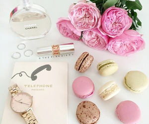 roses, fashion, and macarons image