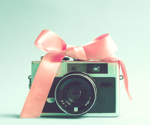 camera, bow, and photography image