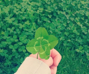 clover, good, and leaves image