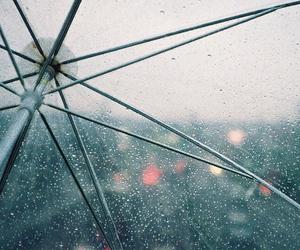rain, umbrella, and photography image