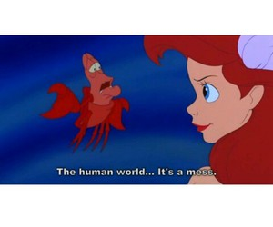 ariel, mess, and world image