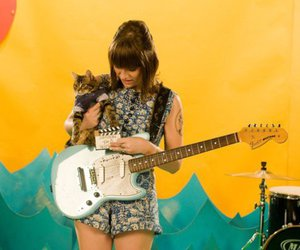 best coast, cat, and guitar image
