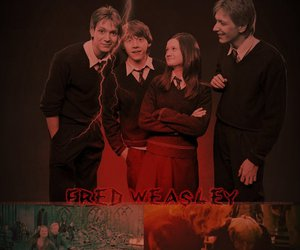 harry potter, george weasley, and ron wesaley image