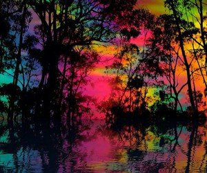 colors, tree, and wallpaper image