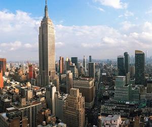 nova york and nyc image