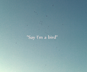 bird, quote, and sky image