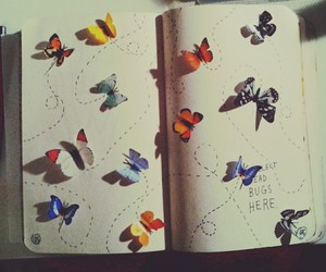 book, butterfly, and fly image