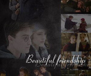 harry potter, best friend, and fantasy image
