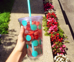drink, strawberries, and water image