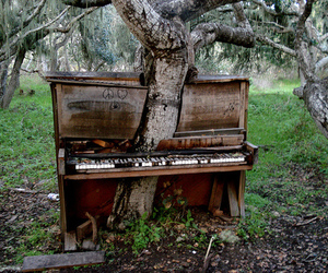piano, tree, and nature image