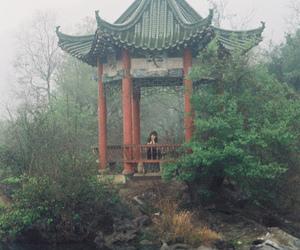 calm, foggy, and stream image
