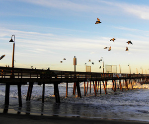 beach, pier, and San Diego image