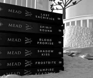 books, love it, and vampire academy image