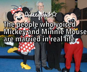 adorable, disney, and fact image