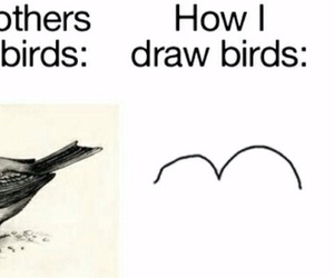 funny, lol, and birds image