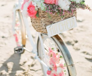 bicycle, flower, and flowers image