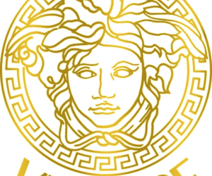 overlay, Versace, and transparent image