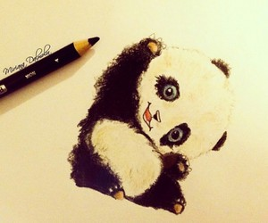 panda, draw, and cute image
