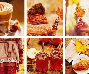 autumn, fall, and can't wait image