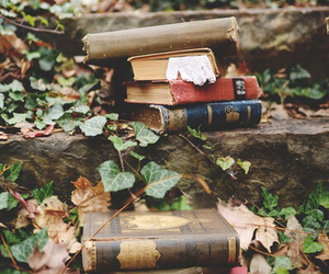 book, vintage, and nature image